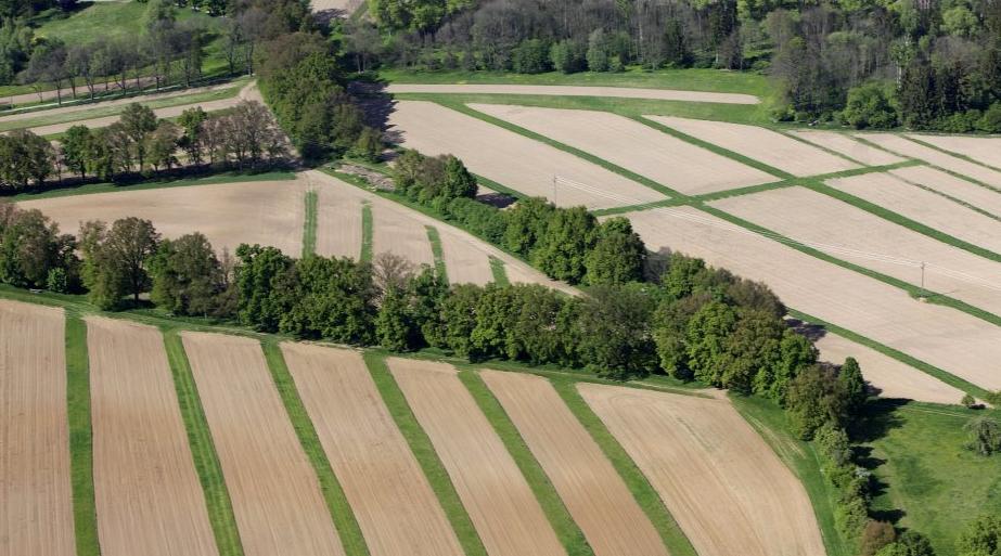 projekty pozemkových úprav